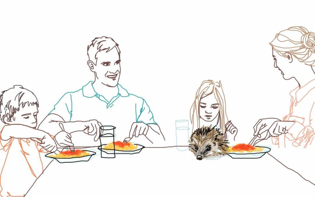 Hsk zijn slechte eters; 6 tips