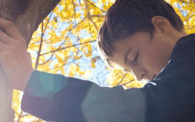 Brief voor mijn gevoelige zoon