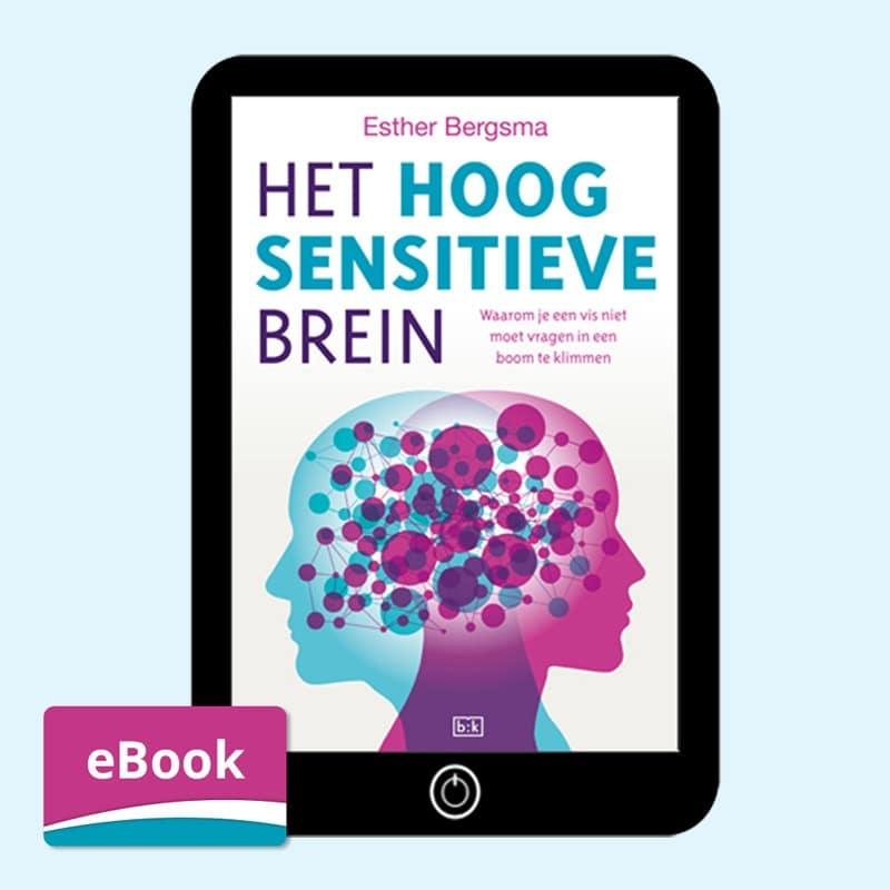 Het Hoogsensitieve Brein eBook