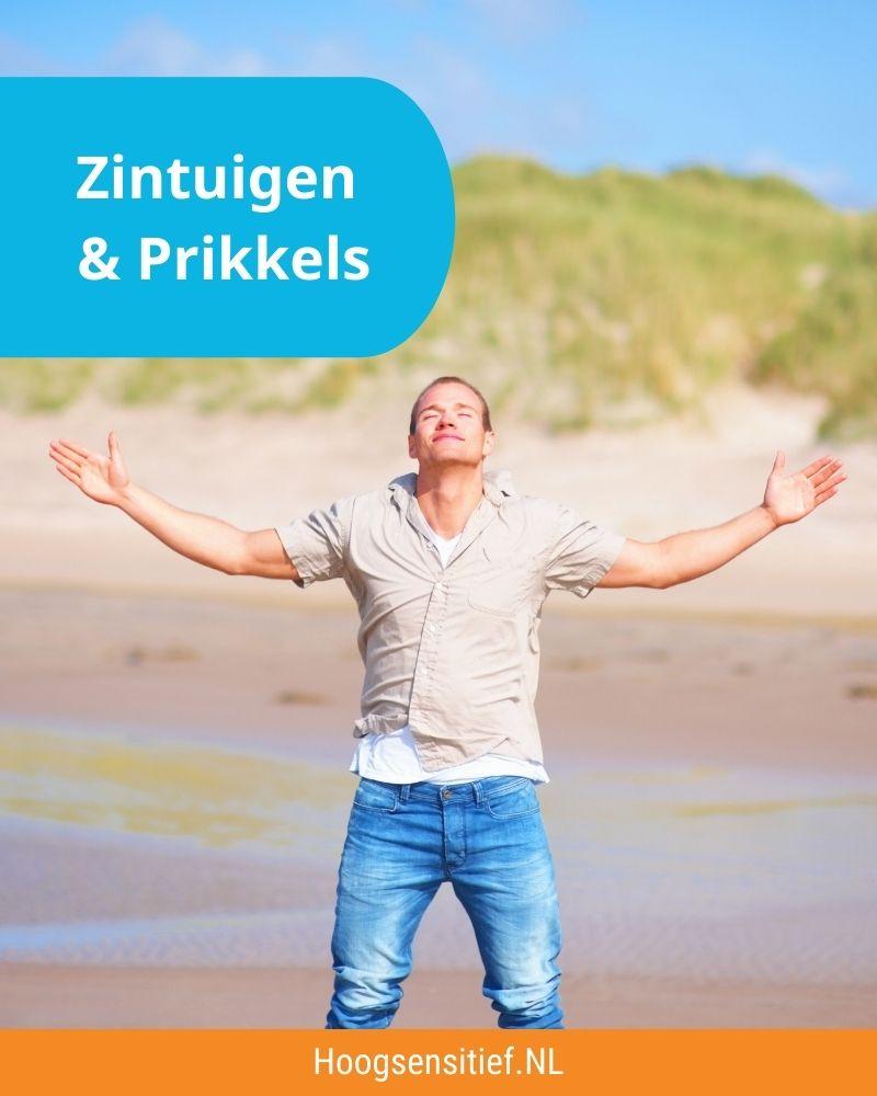Zintuigen & Prikkels